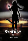 Picture of the book: Synergy